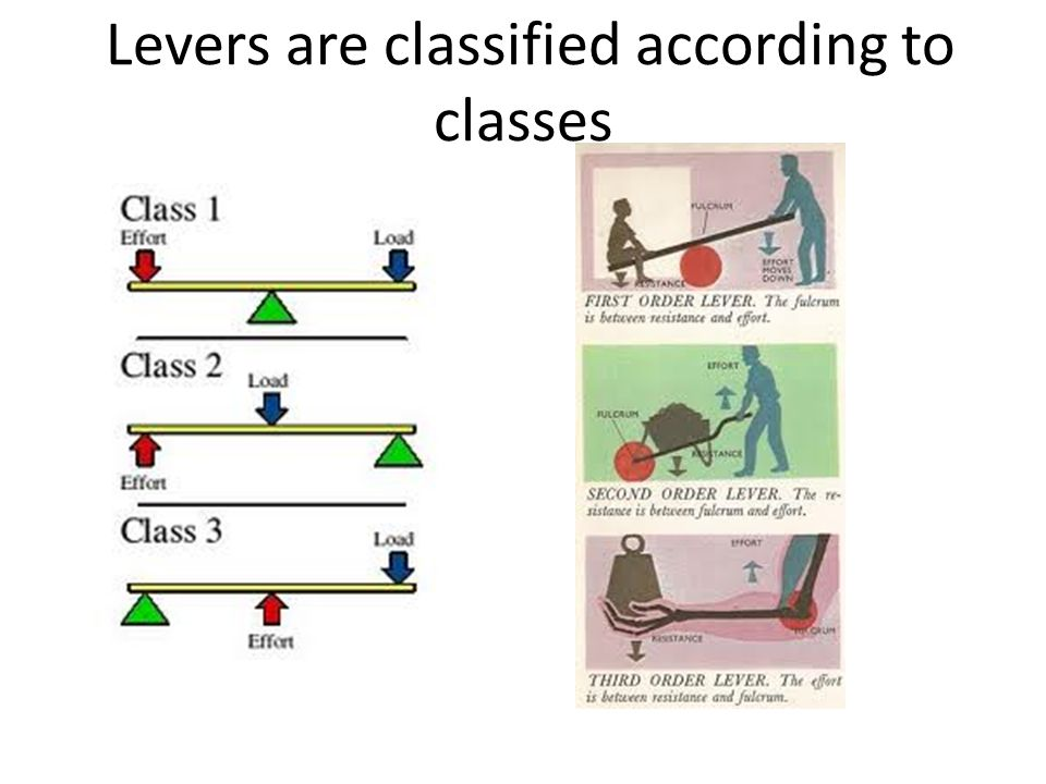 Levers are classified according to classes