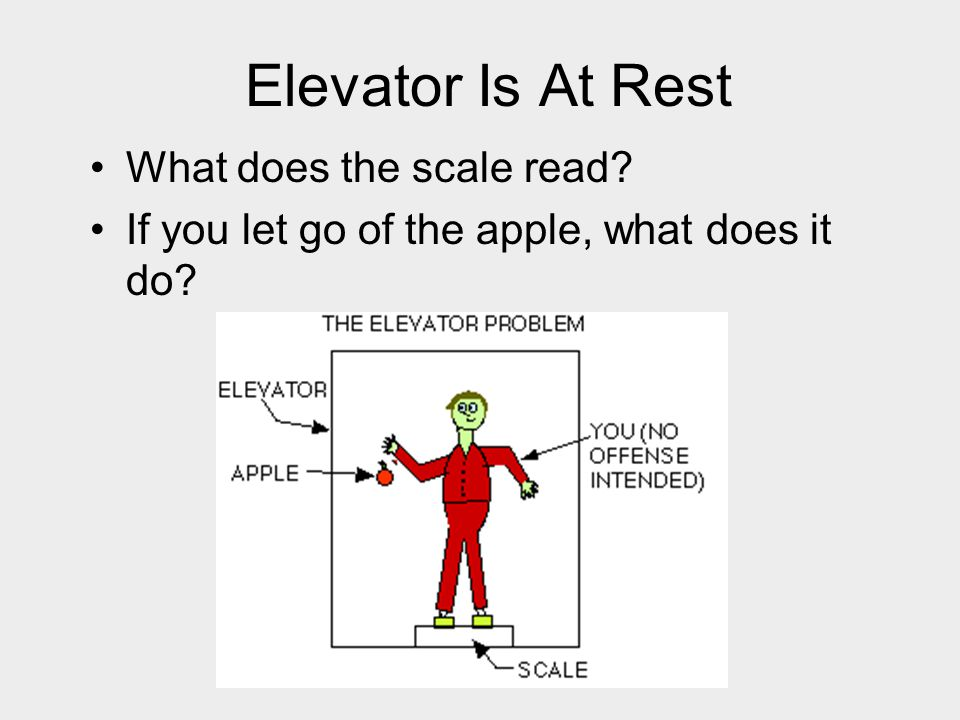 Elevator Is At Rest What does the scale read
