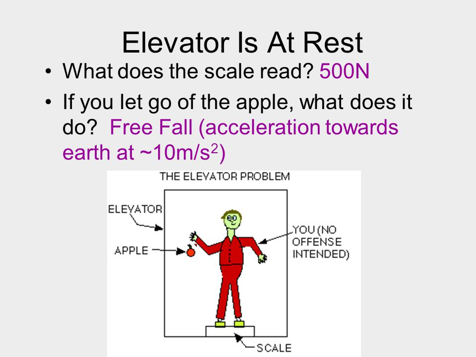 Elevator Is At Rest What does the scale read 500N