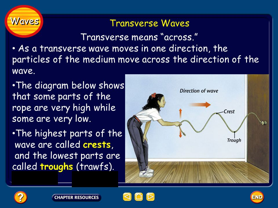 Transverse means across.