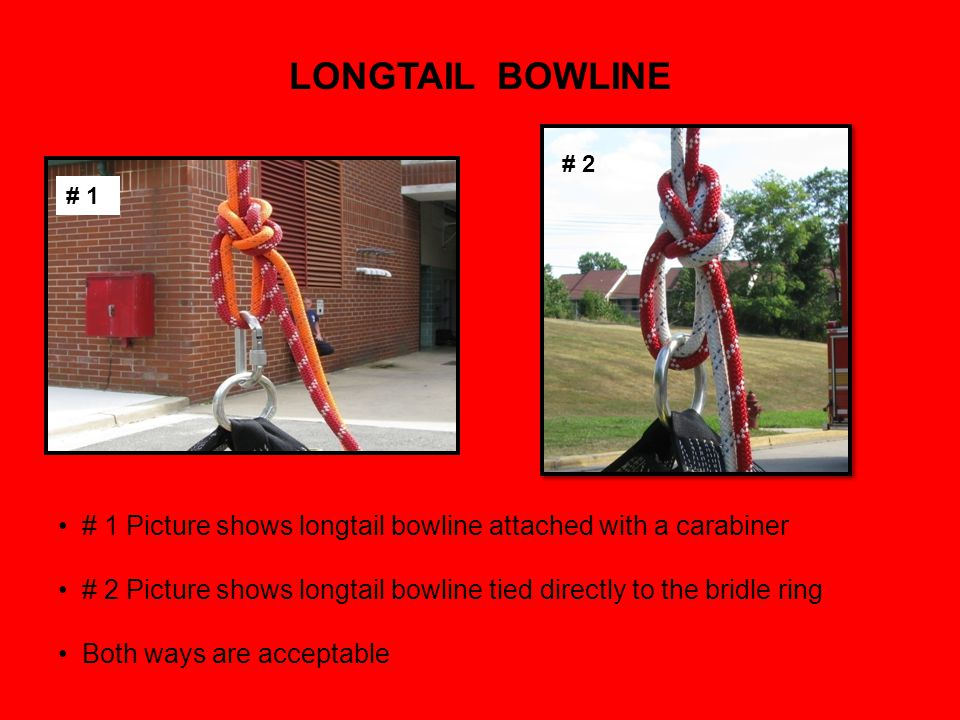 LONGTAIL BOWLINE # 2. # 1. # 1 Picture shows longtail bowline attached with a carabiner.
