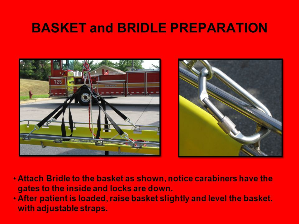 BASKET and BRIDLE PREPARATION