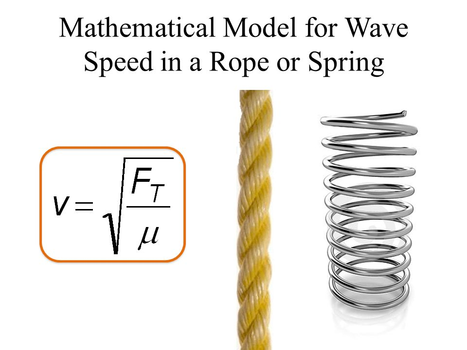 Mathematical Model for Wave Speed in a Rope or Spring