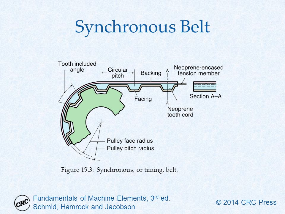 Synchronous Belt Figure 19.3: Synchronous, or timing, belt.