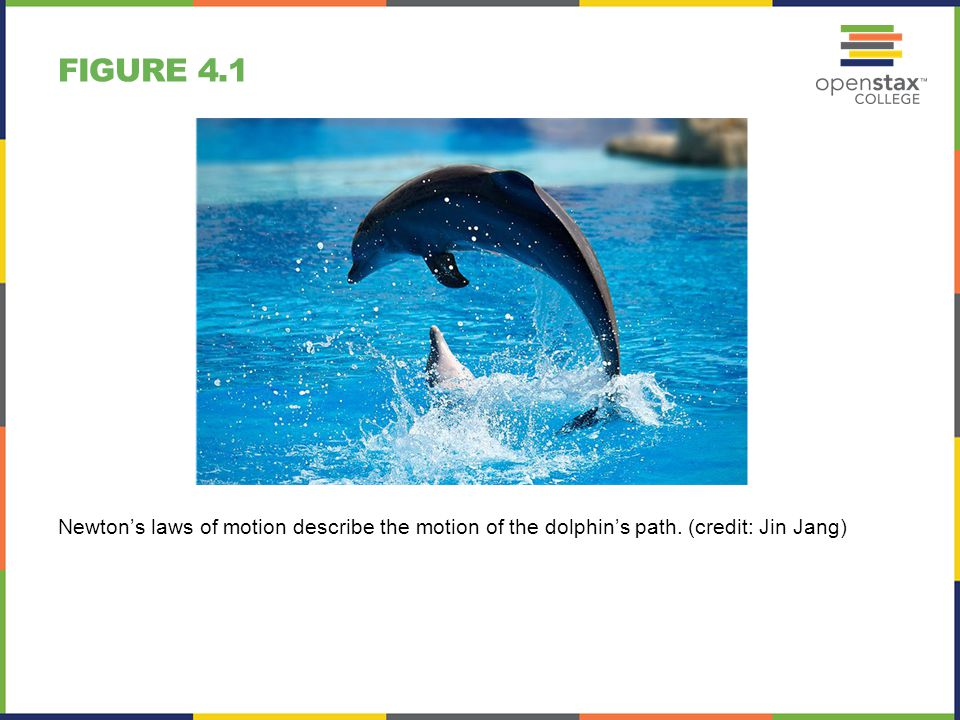 Figure 4.1 Newton's laws of motion describe the motion of the dolphin's path. (credit: Jin Jang)