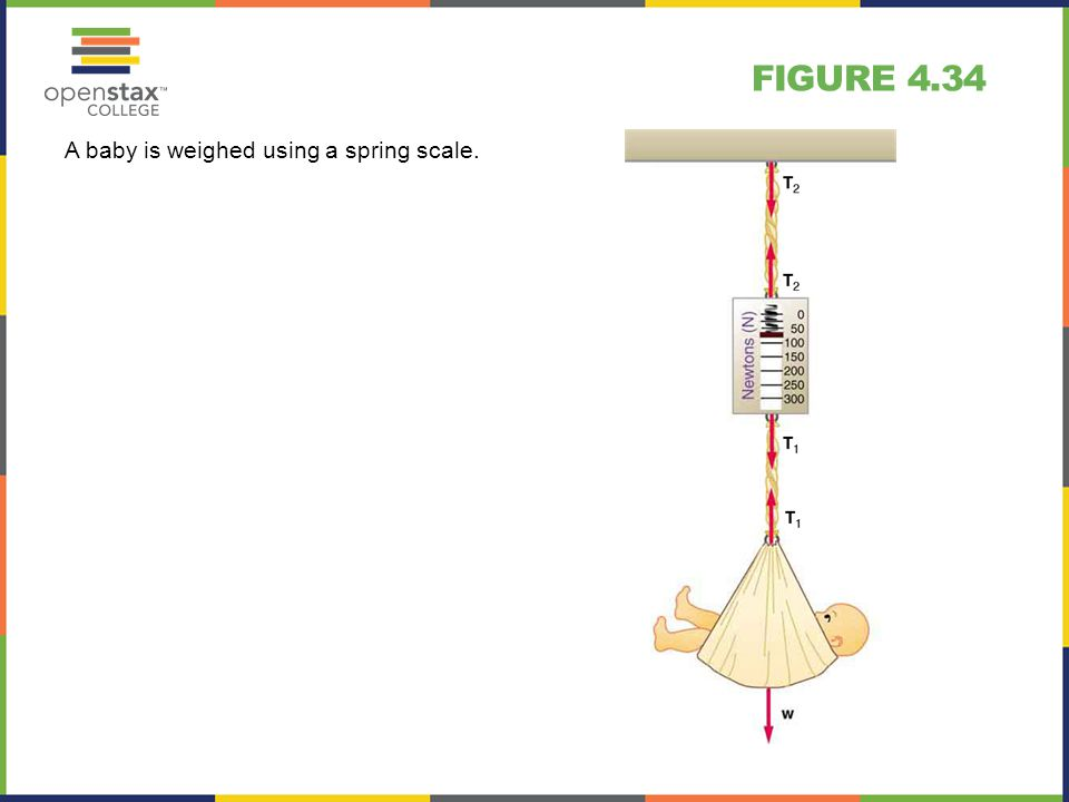 Figure 4.34 A baby is weighed using a spring scale.