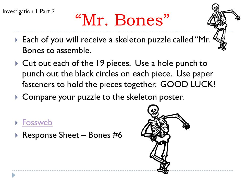 Mr. Bones Investigation 1 Part 2. Each of you will receive a skeleton puzzle called Mr. Bones to assemble.