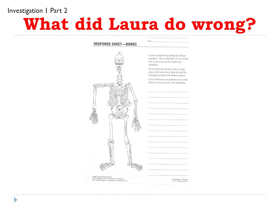 Investigation 1 Part 2 What did Laura do wrong