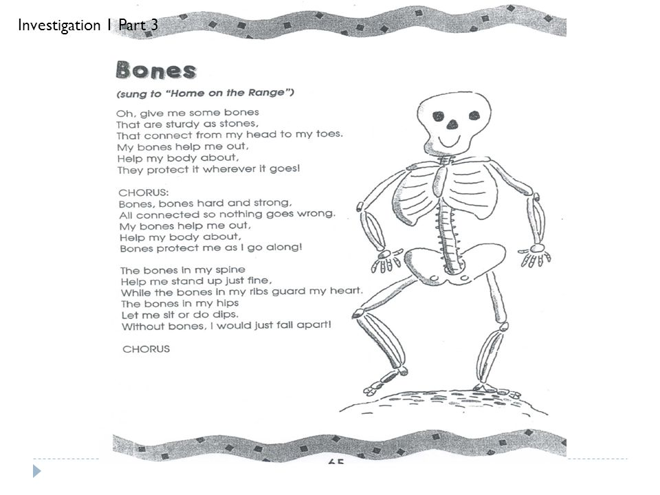 Investigation 1 Part 3 Sing Bones with the class as the Engage for Investigation 1 Part 3