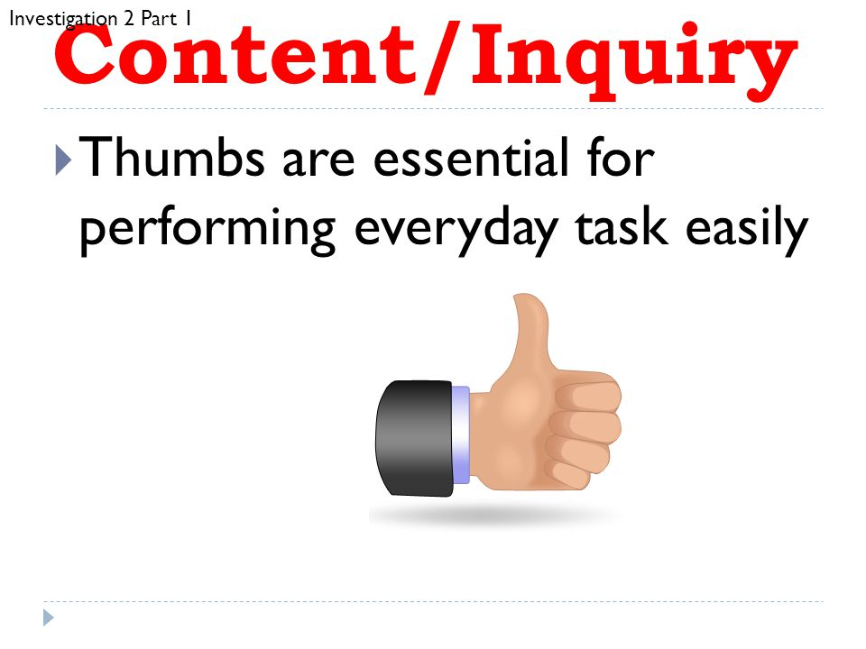 Investigation 2 Part 1 Content/Inquiry. Thumbs are essential for performing everyday task easily.