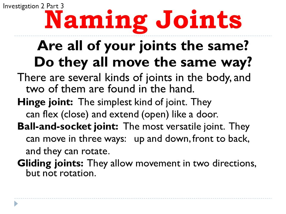 Are all of your joints the same Do they all move the same way