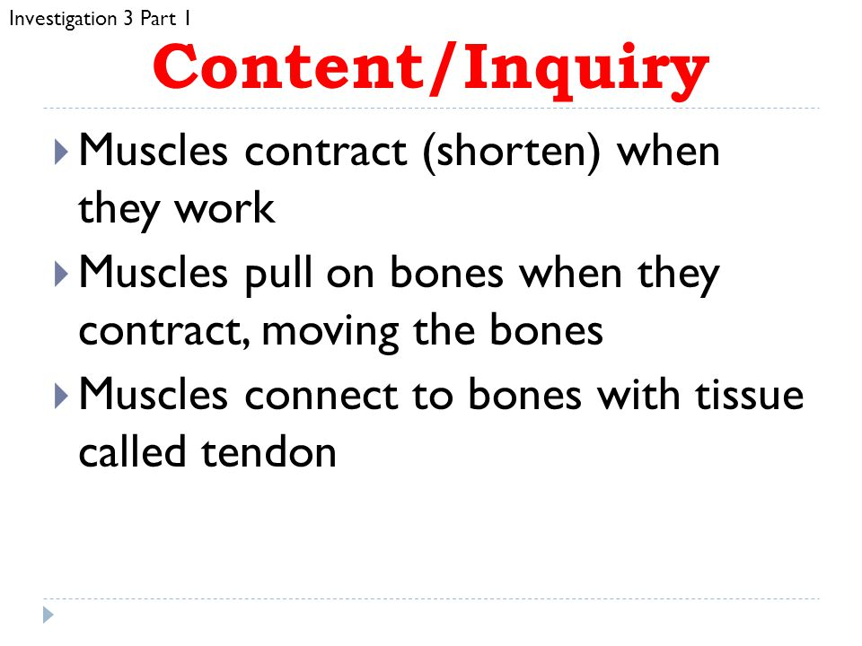 Content/Inquiry Muscles contract (shorten) when they work