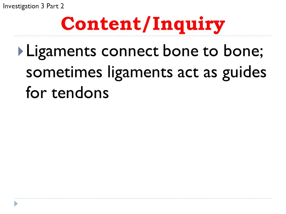 Investigation 3 Part 2 Content/Inquiry. Ligaments connect bone to bone; sometimes ligaments act as guides for tendons.