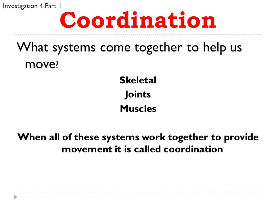 Coordination What systems come together to help us move Skeletal