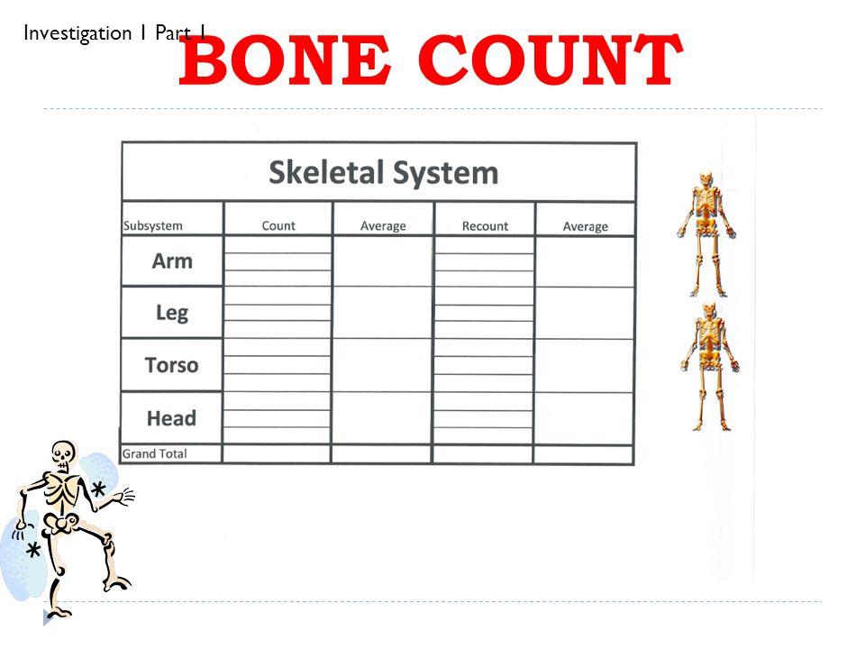 BONE COUNT Investigation 1 Part 1
