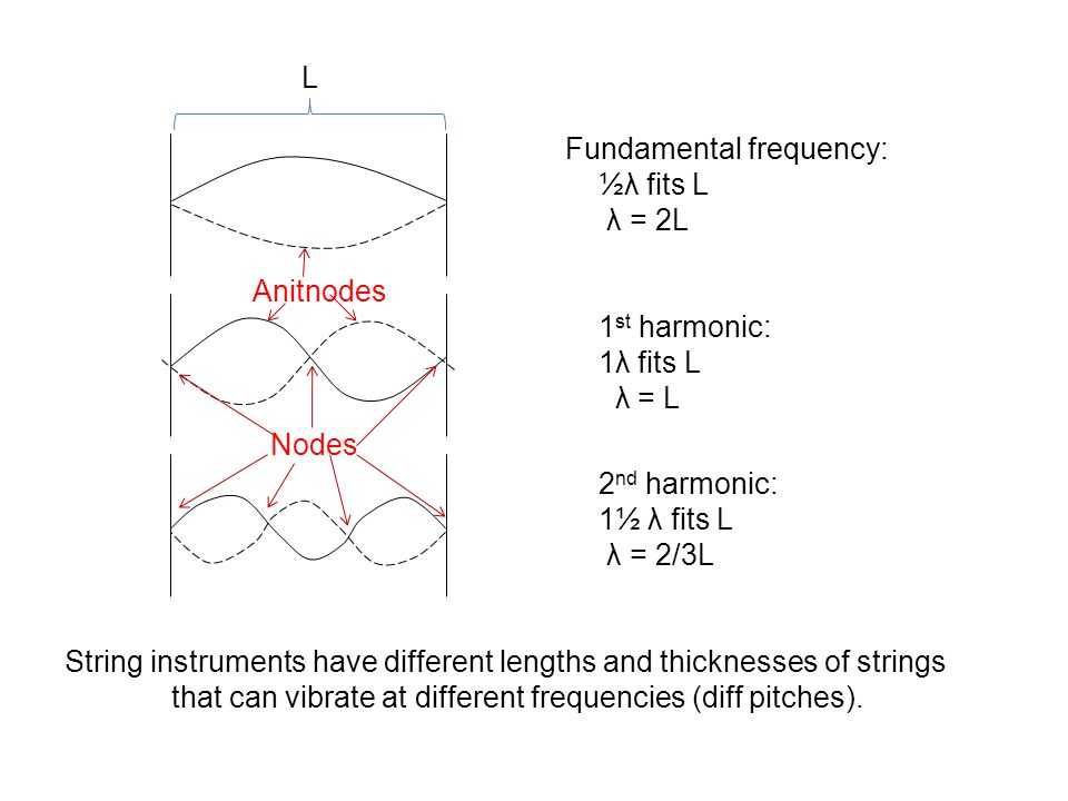 Nodes L Fundamental frequency: ½λ fits L λ = 2L Anitnodes