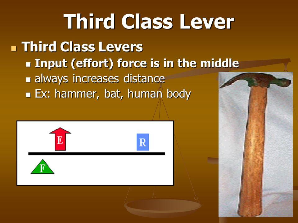 Third Class Lever Third Class Levers