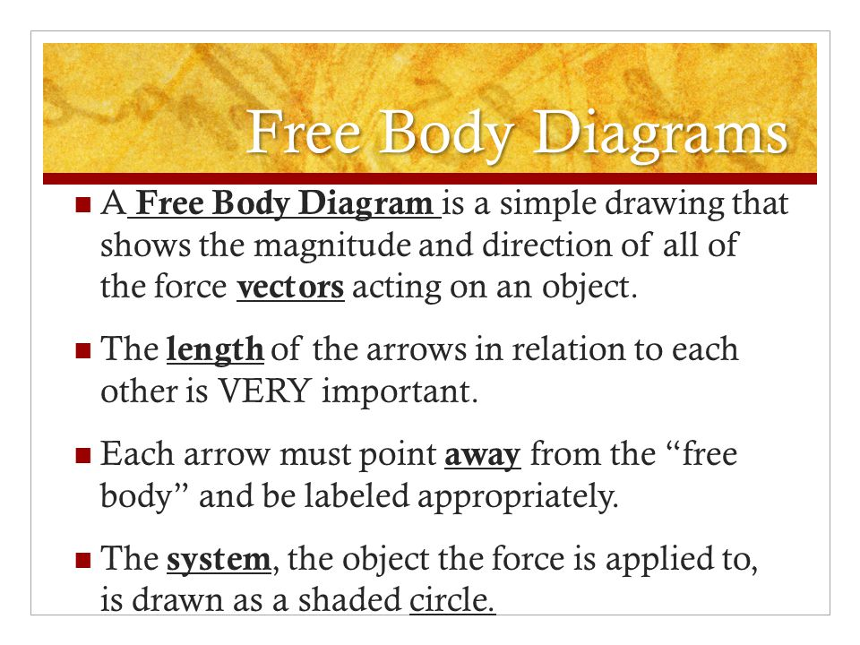 Free Body Diagrams A Free Body Diagram is a simple drawing that shows the magnitude and direction of all of the force vectors acting on an object.
