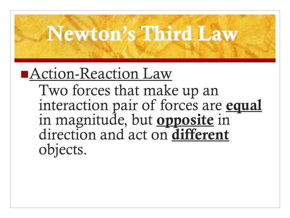 Newton's Third Law Action-Reaction Law