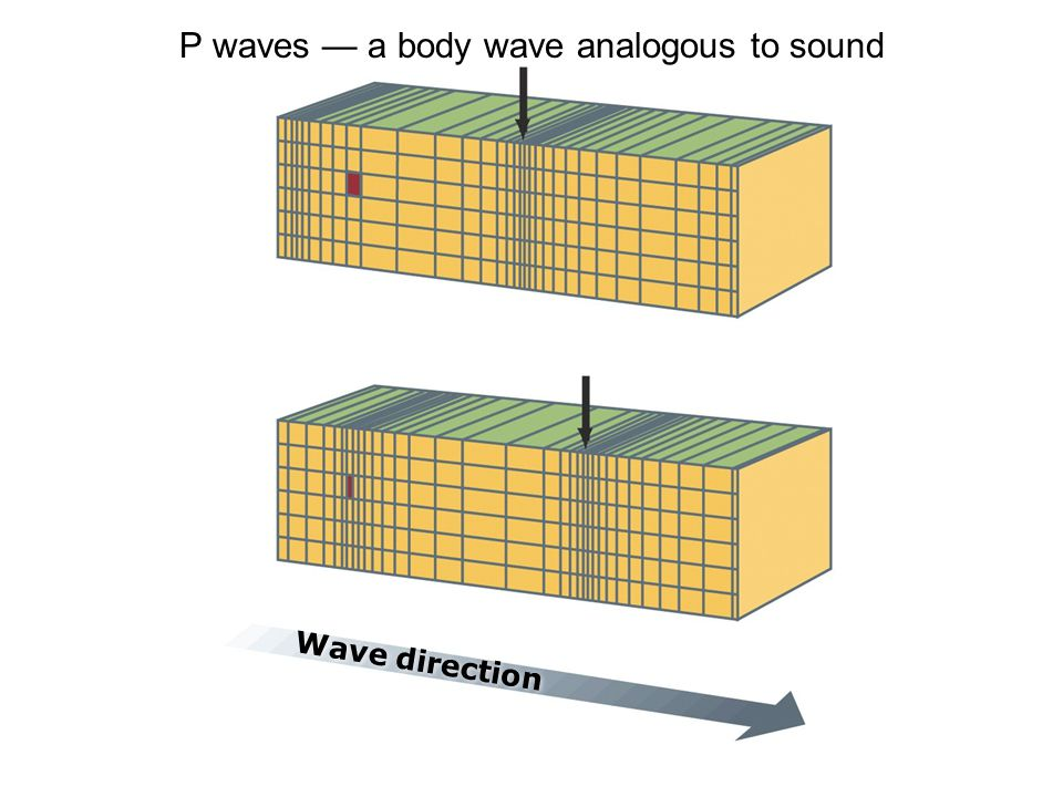 P waves — a body wave analogous to sound