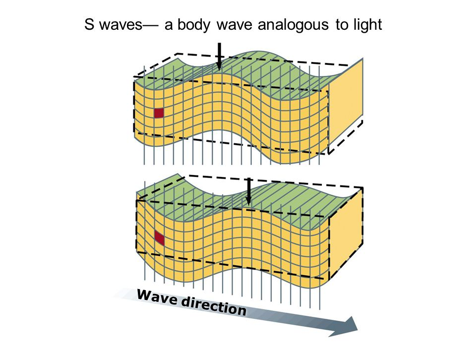 S waves— a body wave analogous to light