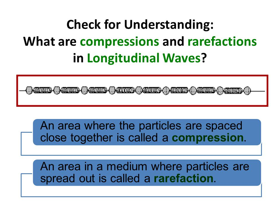 Check for Understanding: What are compressions and rarefactions in Longitudinal Waves