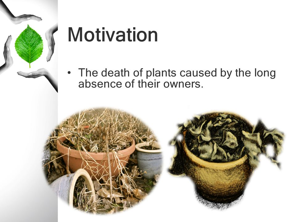 Motivation The death of plants caused by the long absence of their owners.