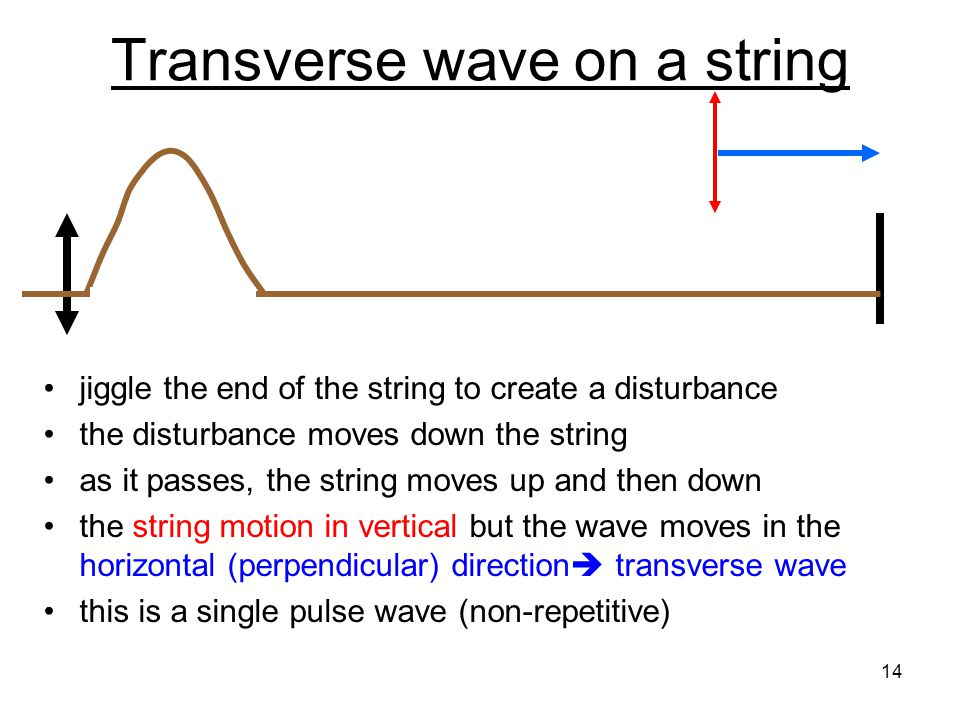 Transverse wave on a string