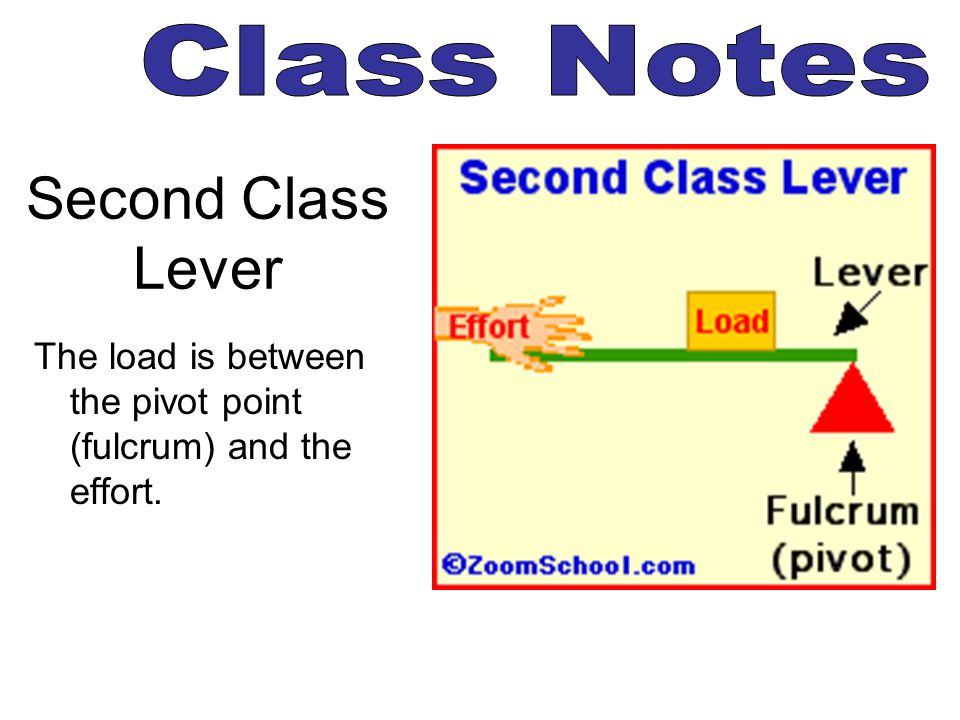 Second Class Lever Class Notes