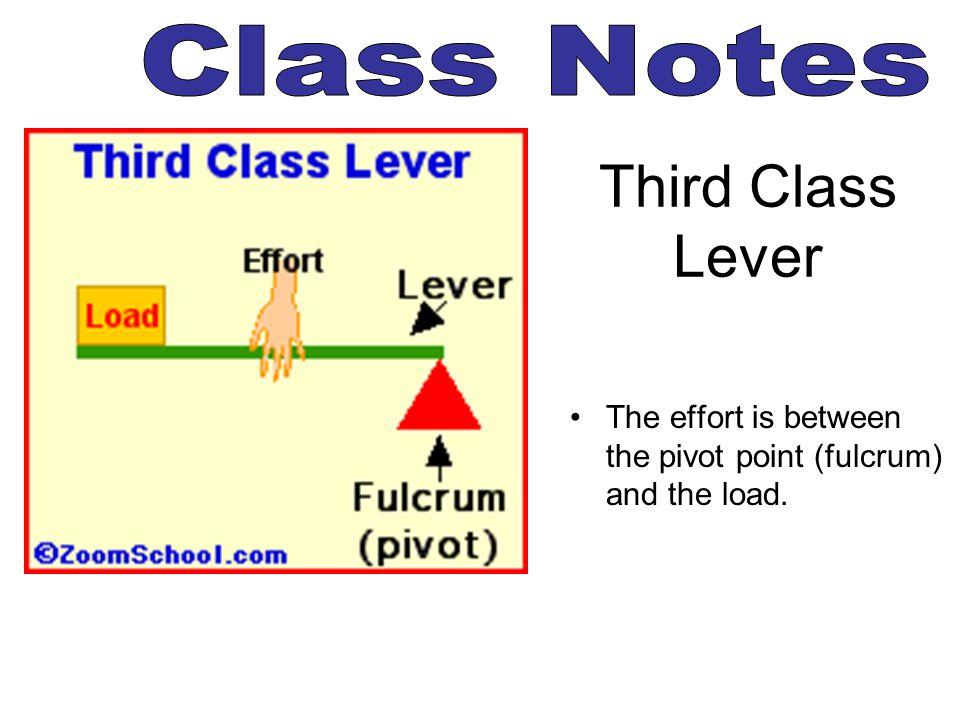 Third Class Lever Class Notes