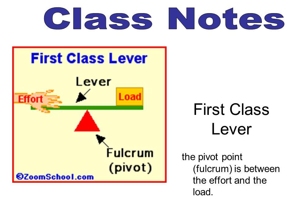 First Class Lever Class Notes