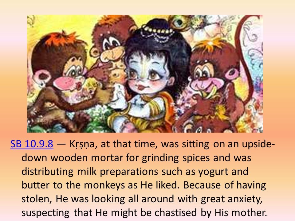 SB 10.9.8 — Kṛṣṇa, at that time, was sitting on an upside-down wooden mortar for grinding spices and was distributing milk preparations such as yogurt and butter to the monkeys as He liked.