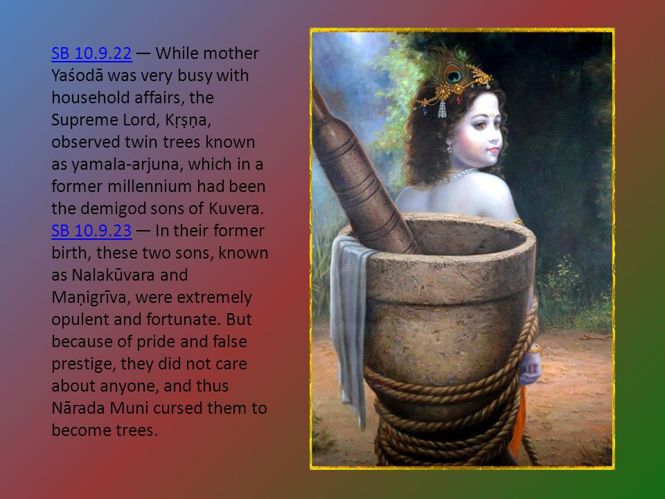 SB 10.9.22 — While mother Yaśodā was very busy with household affairs, the Supreme Lord, Kṛṣṇa, observed twin trees known as yamala-arjuna, which in a former millennium had been the demigod sons of Kuvera.
