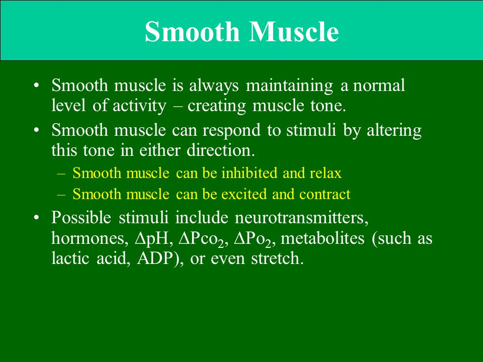 Smooth Muscle Smooth muscle is always maintaining a normal level of activity – creating muscle tone.