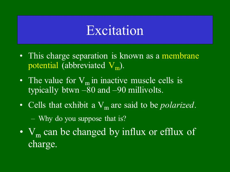 Excitation Vm can be changed by influx or efflux of charge.