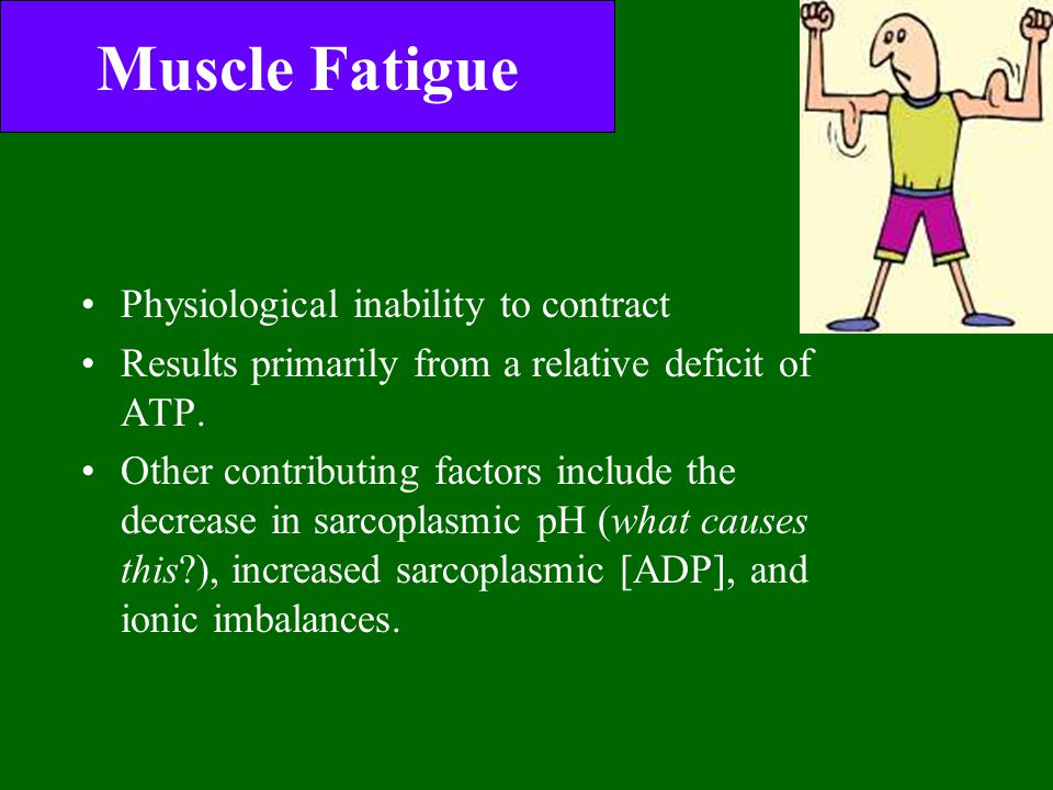 Muscle Fatigue Physiological inability to contract