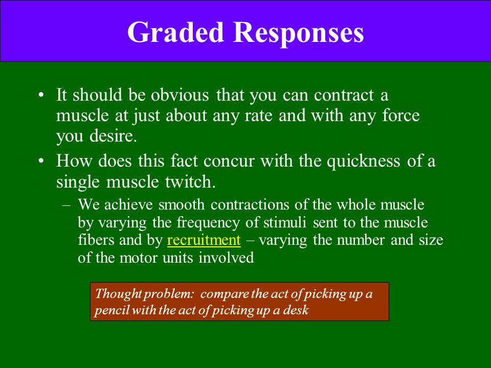 Graded Responses It should be obvious that you can contract a muscle at just about any rate and with any force you desire.