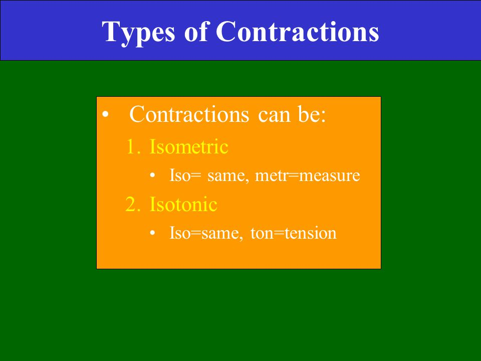 Types of Contractions Contractions can be: Isometric Isotonic