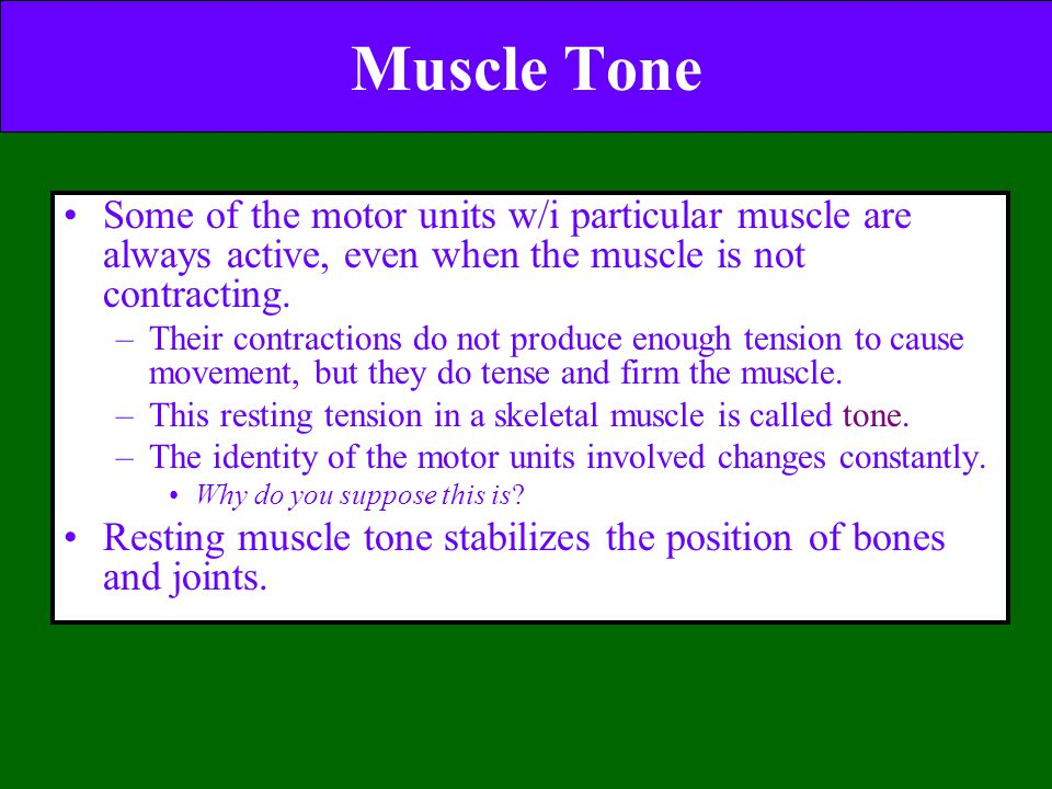 Muscle Tone Some of the motor units w/i particular muscle are always active, even when the muscle is not contracting.