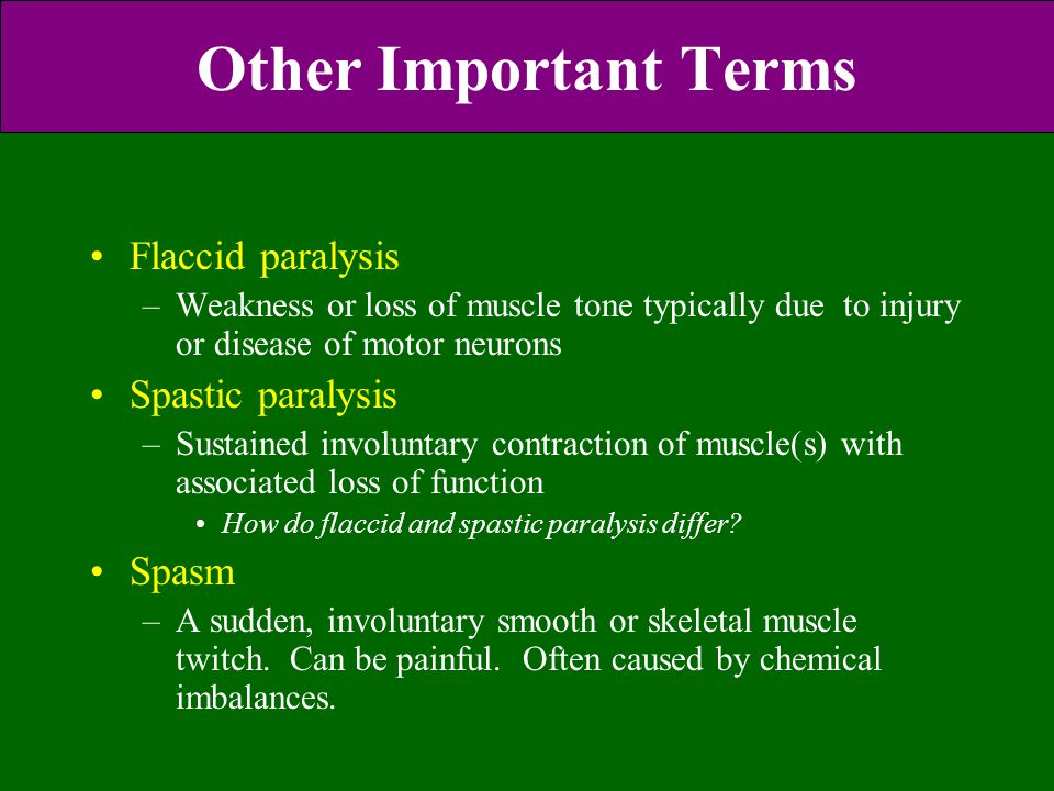 Other Important Terms Flaccid paralysis Spastic paralysis Spasm