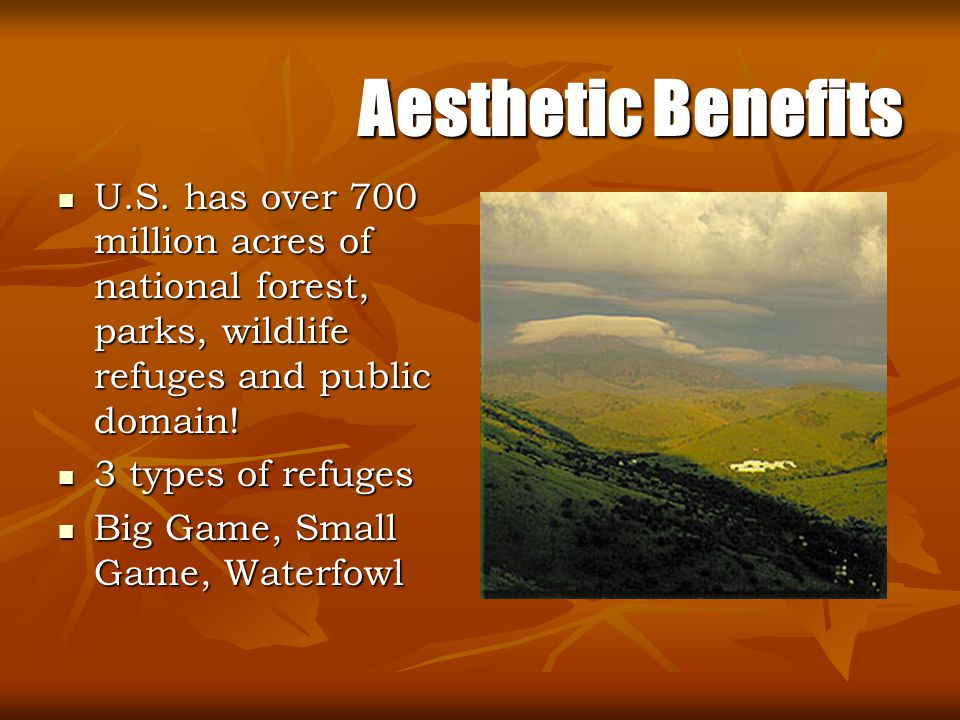 Aesthetic Benefits U.S. has over 700 million acres of national forest, parks, wildlife refuges and public domain!