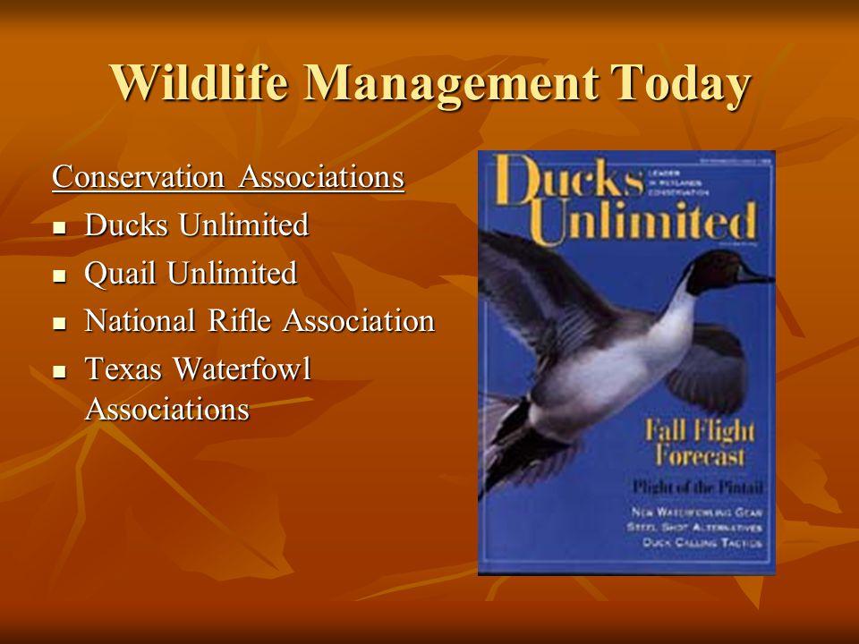Wildlife Management Today