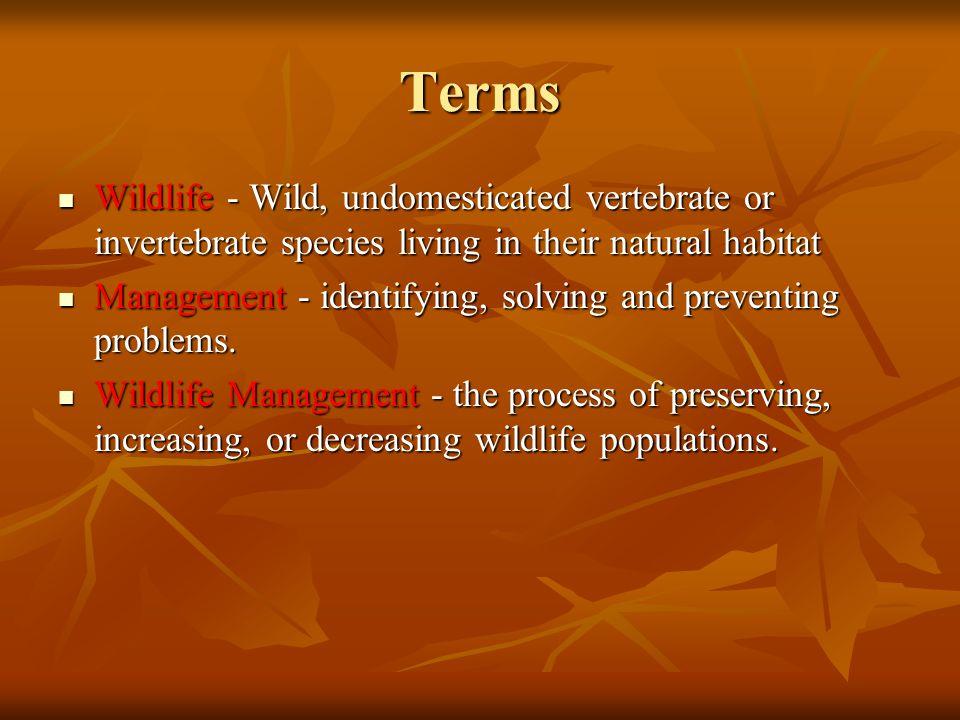 Terms Wildlife - Wild, undomesticated vertebrate or invertebrate species living in their natural habitat.