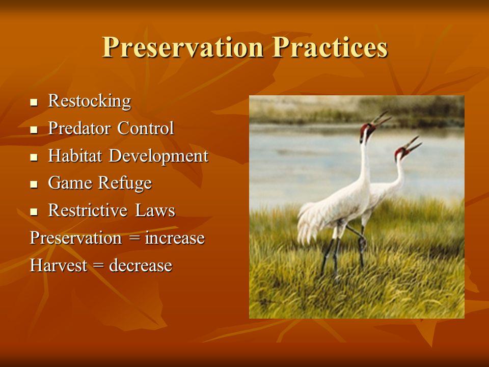 Preservation Practices