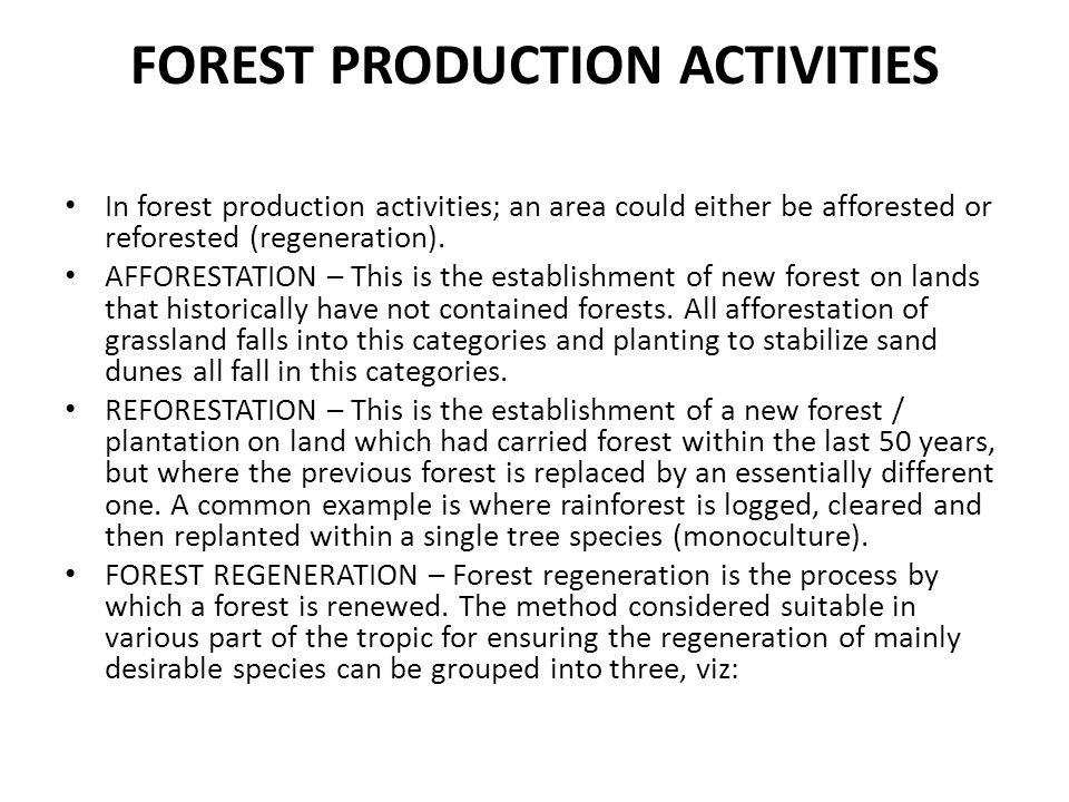 FOREST PRODUCTION ACTIVITIES