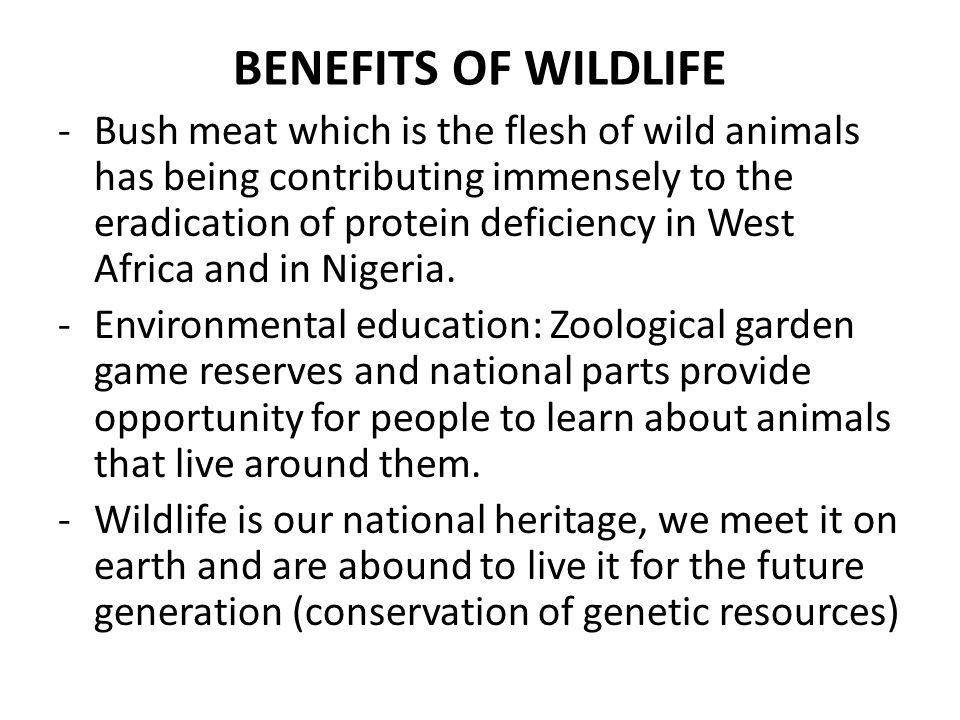 BENEFITS OF WILDLIFE