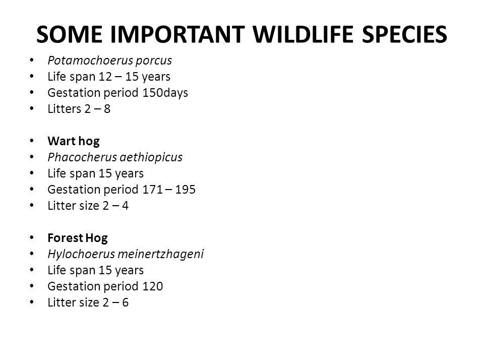 SOME IMPORTANT WILDLIFE SPECIES