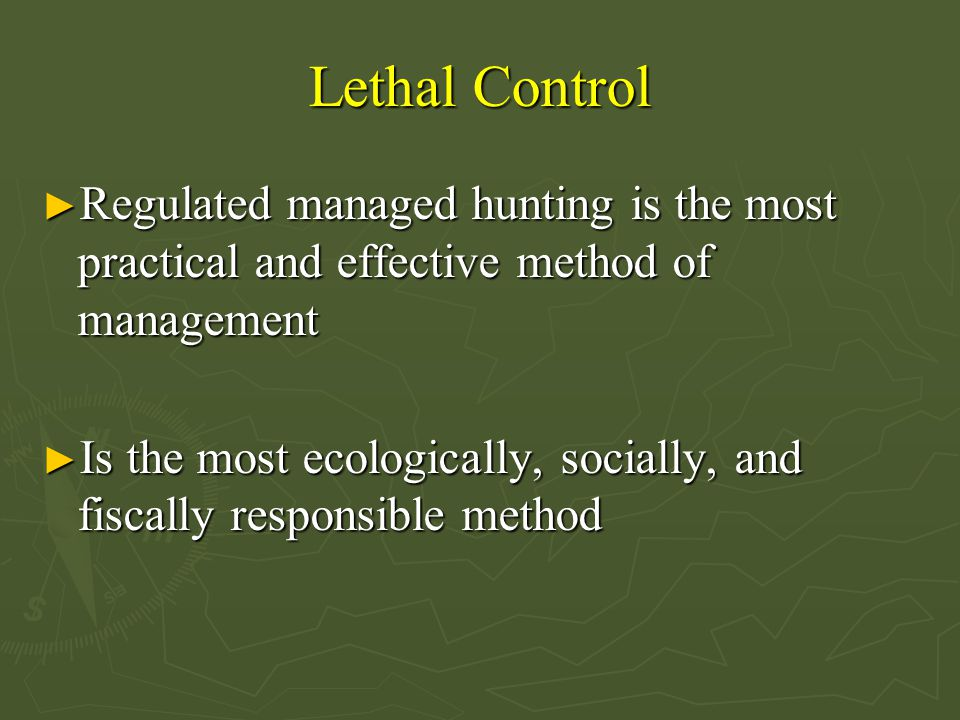 Lethal Control Regulated managed hunting is the most practical and effective method of management.