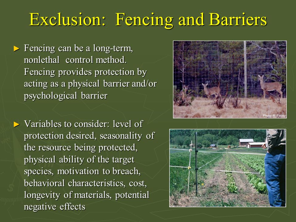 Exclusion: Fencing and Barriers