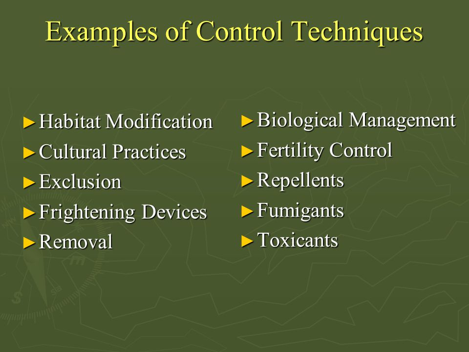 Examples of Control Techniques